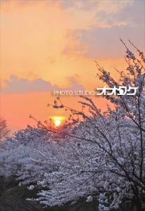 S-塩川町写真連盟会長賞 のコピー