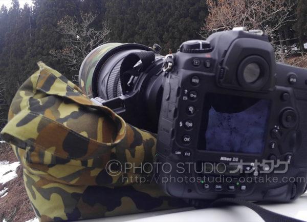 レンズピロー 野鳥撮影グッツ
