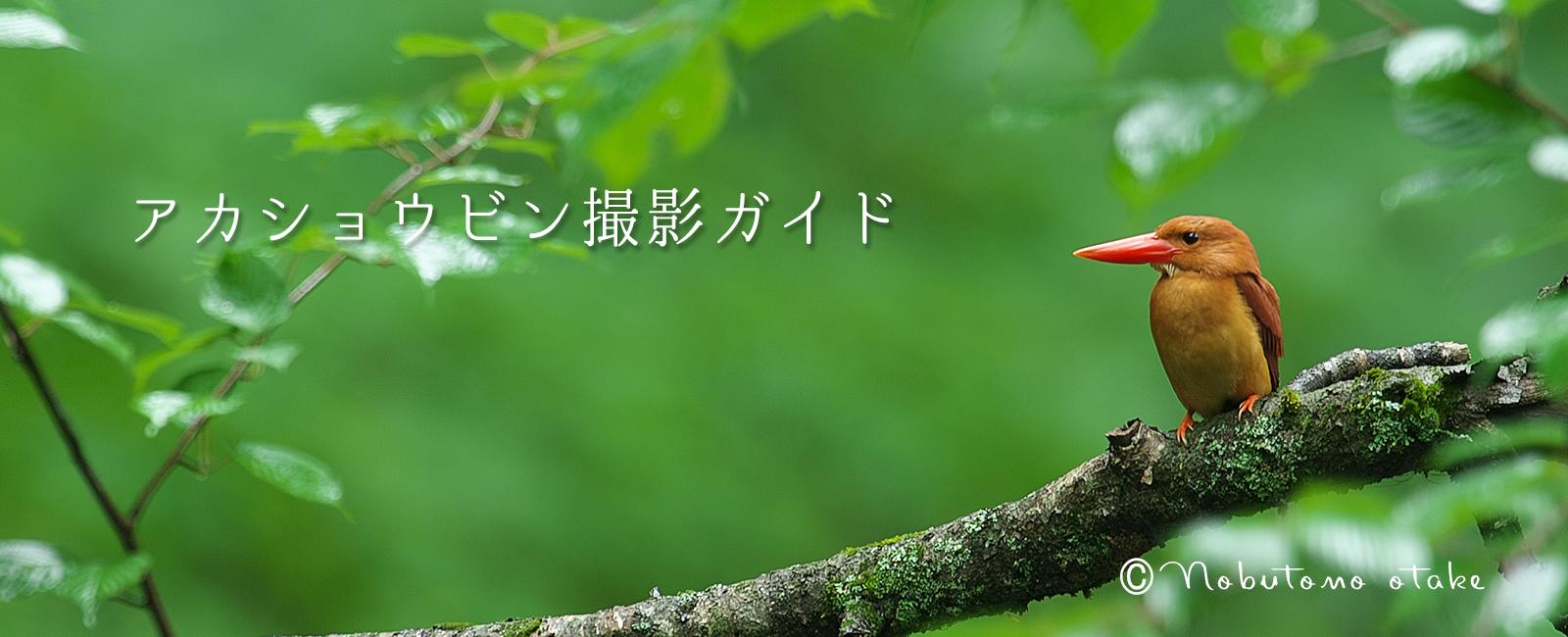 會津の写真館・オオタケカメラ