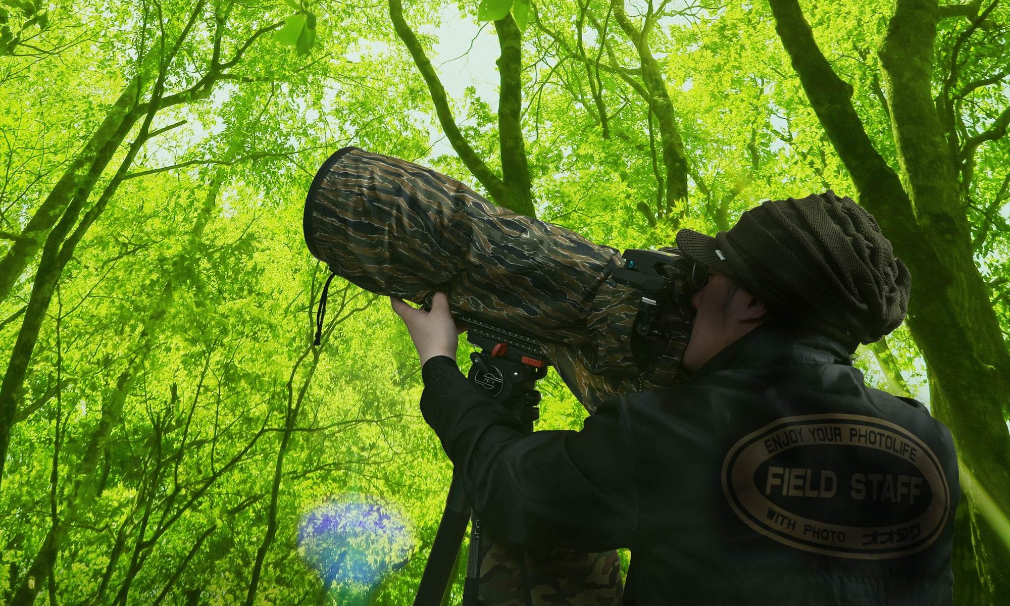 野鳥撮影,便利,道具