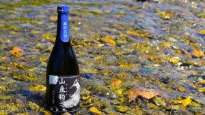 ヤマセミ,日本酒